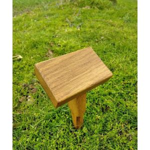 Plant and small ashes marker (English oak)