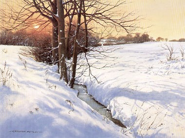 Graham Petley Four Seasons